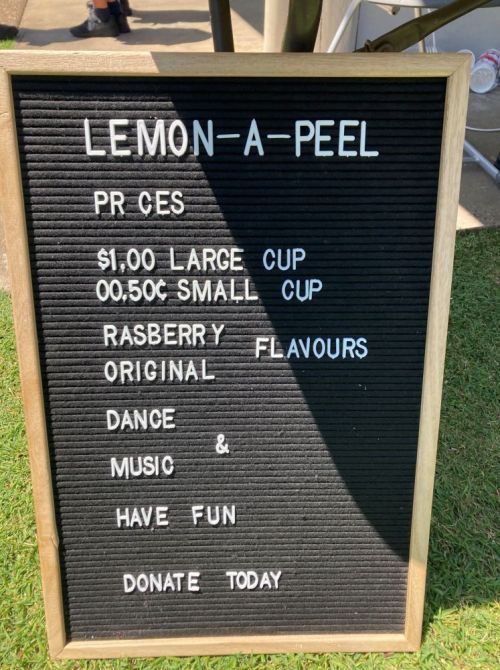 Lemonade Wars - St Vincent De Paul Fundraiser